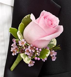 L-pink rose