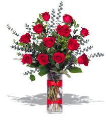 Roses 1 doz cylinder