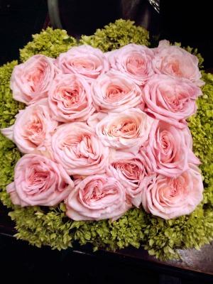 ohjara-garden-pink-rose-sq-$150