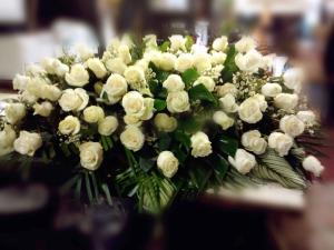 Blanco Puro-roses-ataúd-sray- $ 400