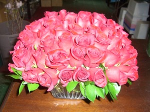 red roses            collection 2