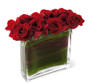 red roses in rectangle